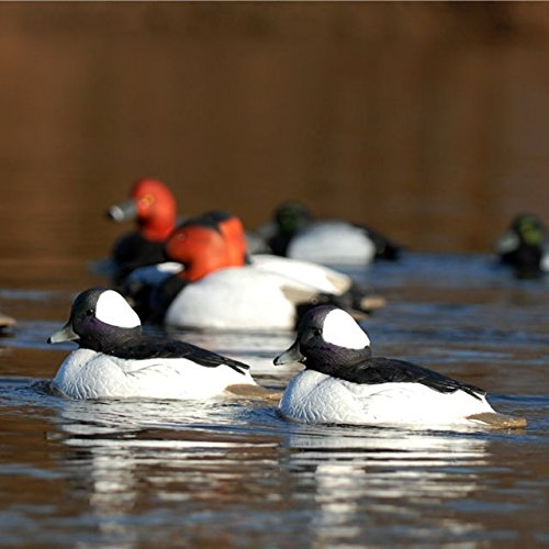 Hunting Gear Over-Size Buffleheads (1/2 Dozen) by Avery (Image #7)