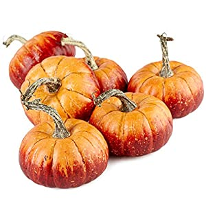 Factory Direct Craft Package of 6 Rustic Artificial Pumpkins for Halloween, Fall and Thanksgiving Decorating 45