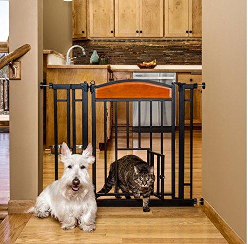 Carlson Pet Products Design Studio Home Decor Walk Through