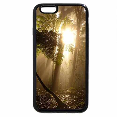 iPhone 6S / iPhone 6 Case (Black) SOL ENTRE AS ARVORES