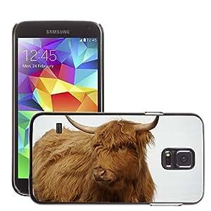 Etui Housse Coque de Protection Cover Rigide pour // M00112285 Vaca bovina Rare Breed color Granja // Samsung Galaxy S5 S V SV i9600 (Not Fits S5 ACTIVE)
