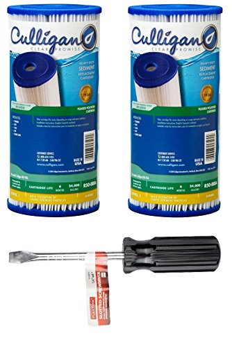 Culligan R50-BBSA Level 1 50 Micron Heavy Duty Sediment Replacement Cartridge (2 CATRIDGES + SCREWDRIVER Scurry off)