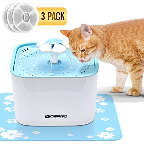 Pet Fountain Cat Water