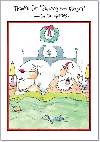 12 'Guide My Sleigh' Hilarious Boxed Christmas Greeting Cards (4.75 x 6.625 Inch), Merry Xmas Note Cards for Holidays, Gifts, Funny Santa & Reindeer Humor, Notecard Stationery w/Envelopes B1696 ()