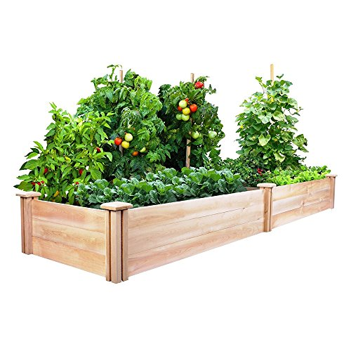 Commart Greenes Cedar Raised Garden Kit 2 Ft. X 8 Ft. X 10.5 In. Ships from USA by Commart