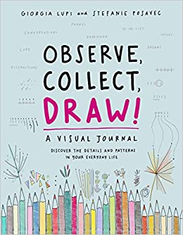 Observe, Collect, Draw!: A Visual Journal: Amazon co uk