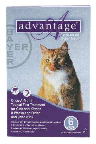 Advantage Cats >9 lb 6pk, My Pet Supplies