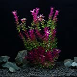 OWIKAR Aquarium Decor Plants High Imitation Aquatic Plants Rose Red Gradient Color Lifelike Fish Tank Decorations Artificial Landscape Plastic Water Plants Detachable Leaves (50cm/19.7inch)