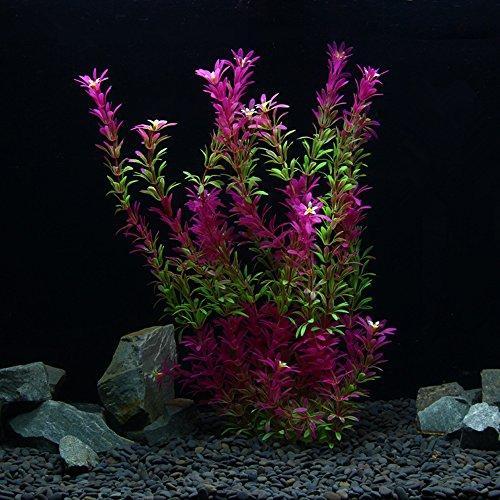 OWIKAR Aquarium Decor Plants High Imitation Aquatic Plants Rose Red Gradient Color Lifelike Fish Tank Decorations Artificial Landscape Plastic Water Plants Detachable Leaves (50cm/19.7inch)