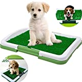 EraseSIZE Dog Indoor Potty Trainer Grass Pee Pad for Pet Cat Puppy Puppy Potty Training as an Litter Box Outdoor Artificial Patch RestroomBathroom Relief System, Durable Weather Proof Synthetic Grass
