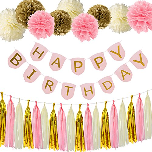 Birthday 13th Banners (Paxcoo Pink and Gold Happy Birthday Banner with Tissue Paper Pom Poms Tassel Garland for Party Decorations)