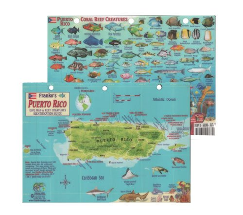 Franko's Map Puerto Rico Fish & Reef Creatures Identification Guide - Fish ID