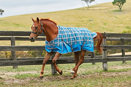 Saxon 600D Standard Neck Medium Turnout Sheet with Gussets, Blue Plaid, Size 72 (Neck Medium Turnout Blanket)