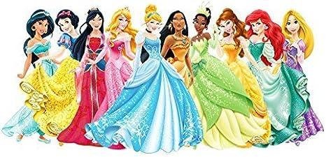 Wondrous 1 2 Sheet Disney Princess Ariel Aurora Bella Cinderella Jasmine Funny Birthday Cards Online Inifodamsfinfo