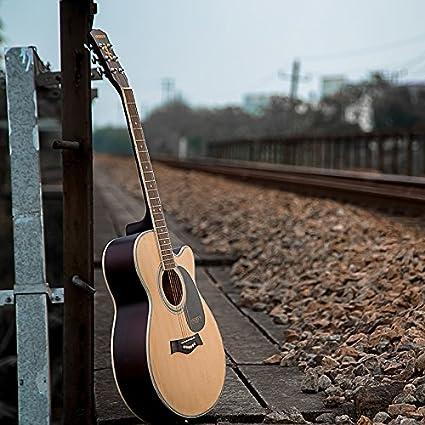 Taninos - colored Guitar / cuerdas de guitarra de madera: Amazon ...