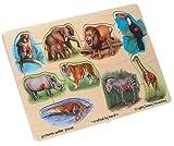 : Wooden Zoo 9-piece Peg Puzzle