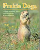 Prairie Dogs, Dorothy Hinshaw Patent, 0395565723