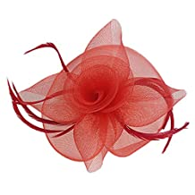 MagiDeal Flower Feather Fascinator Hairpin Mesh Veil Hat for Weddings Races Lady's Day Party Prom Cocktail - Red, 7.9 x 5.9 x 3.1 inch