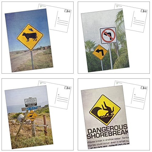 Postcard Set, Funny Street Signs Art Photos, 4 Blank Cards with - Cow Postcard