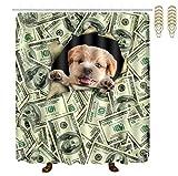 Perfect Life Ideas Dog Potties