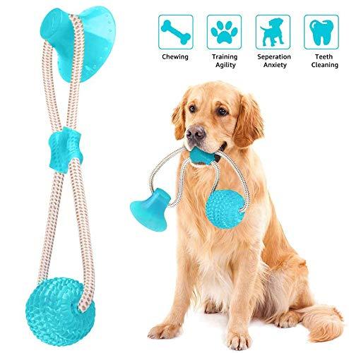 🥇 Juguete Ventosa Interactivos Para Perros