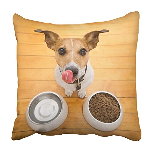 Feed Jack Russell (Emvency Square Throw Waist Pillow Case 18x18 Inches Decorative Cushion Pillowcases hungry jack russell dog behind food bowl Throw Pillow Cover With Hidden Zipper For Bedroom Decor Sofa Couch)