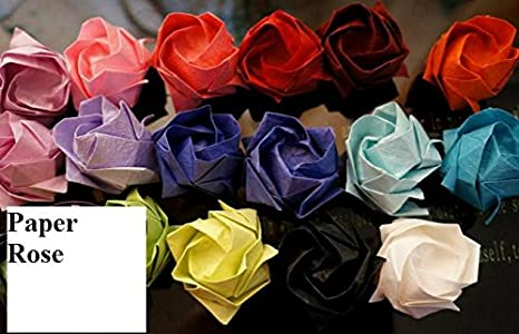Amazon.com: A Dozen Two-toned Paper Roses- Custom first ... | 300x466