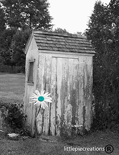 Black White Teal Wall Art, Daisy Flower, Vintage Outhouse, Modern Country Bath Wall Art 8x10