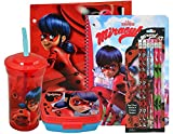 Miraculous Ladybug On The Go School Set