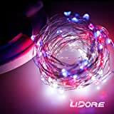 LIDORE Red White & Blue Patriotic Micro LED Light Decorative pre-lit-feature traditional-style Lights with Different Twinkle Modes, Silver Color Copper Wire,100 counts,110v Plug in