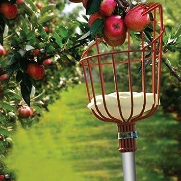 Cesto raccogli Frutta e raccogli Frutta con Bastoncino per Scopa Stainless Steel Guajave