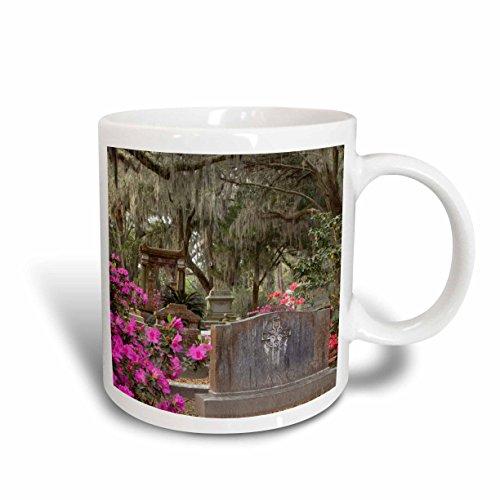 3dRose mug_89426_2