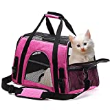 Pet Carrier Airline Approved Collapsible Soft Pink Cat Carrier Travel Bag for Small Medium Cats Kittens Puppys, Small Dogs