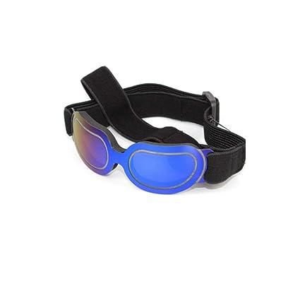 BSJZ Gafas De Sol Gafas De Sol Gafas A Prueba De Viento Golden Retriever Gafas De