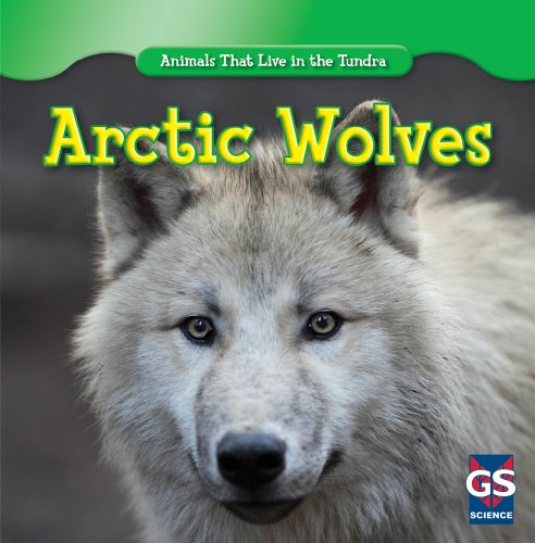 Arctic Wolves (Animals That Live in the Tundra) Arctic Gray Wolf