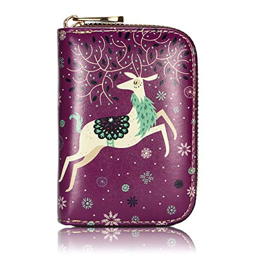 APHISON RFID Credit Card Holder Wallets for Women Leather Zipper Card Case for Ladies Girls/Gift Box (Purple-deer) ()