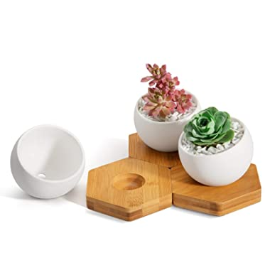 Opps White Ceramic Ball-Shape Succulent Cactus Plant Pot with Hexagonal Bamboo Tray – Set of 3