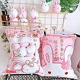 Nenalayo Cute Throw Pillow Stuffed Animal Toys