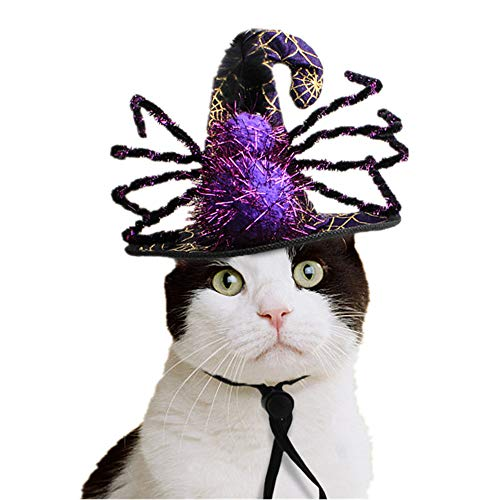BABYS'q Pet Hat,Halloween Party Costume Spider Decoration Witch Hat for Cats and Small Dogs