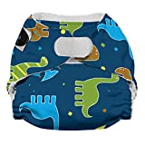 Imagine Baby Products Newborn Stay Dry All-In-One Hook and Loop Cloth Diaper, Rawr