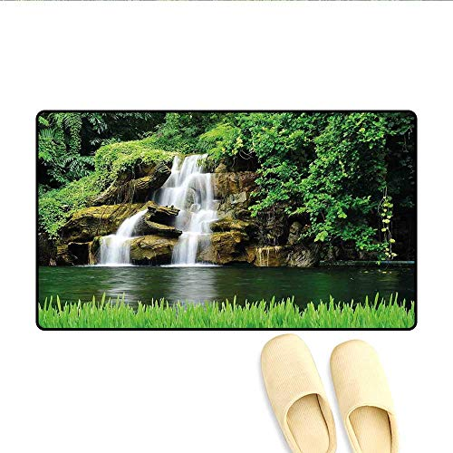 Bath Mat Double Waterfalls Flow to Natural Green Lake with Bushes and Grass Like Garden Print Door Mat Increase Green 24