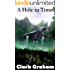 A Hole in Time (Time Loop Book 2)