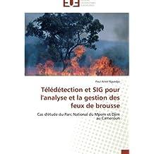 TELEDETECTION ET SIG POUR L'ANALYSE ET LA GESTION DES FEUX DE BROUSSE