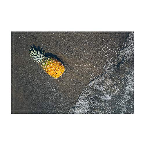 DYNH Pineapple Doormat, Tropical Fruits on Ocean Beach Bath Rugs, Bath Mats Flannel Non-Slip Floorcover, 15.7x23.6in Room Accessories