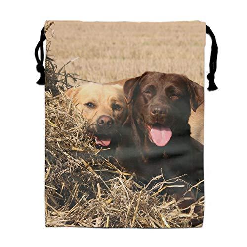 Labrador Bro Drawstring Bag Party Favors Bag Gift for Girl 11.8 × 15.7