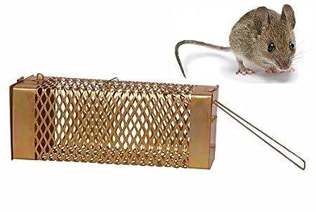 Bridge2shopping Iron Rat Trap Cage (Copper, 27 cm)