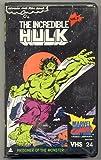 Marvel Comics Video Library Vol. 24: The Incredible Hulk Vol. 2