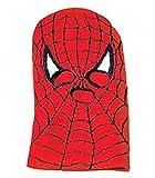 Spiderman Licensed Berkshire Knit Full Face Ski Mask