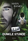 KGI - Dunkle Stunde (KGI-Reihe, Band 1)