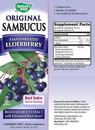 Nature s Way Sambucus Black Elderberry Original Syrup, 8 Ounce, 2 Pack